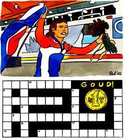 Goud schaatsen puzzel
