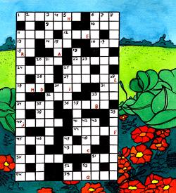 Veld bloemen puzzel