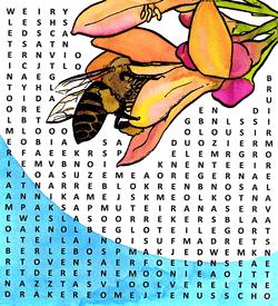 Bloemen woordzoeker puzzel