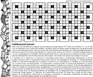 Ladder januari puzzel