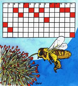 Insecten puzzel
