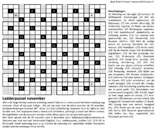 Ladder november puzzel