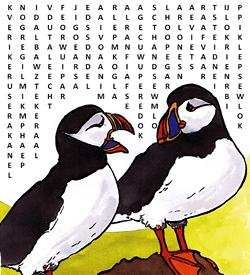 Papegaaiduiker woordzoeker puzzel