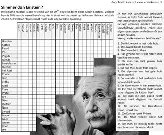 Logisch raadsel puzzel Einstein