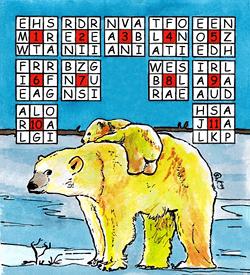 IJsbeer puzzel