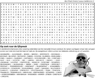 Lijfspreuk woordzoeker puzzel