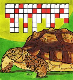 Schildpad haas puzzel