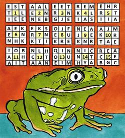 Kikker Kermit puzzel