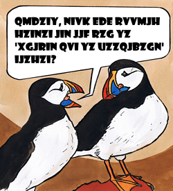 Papegaaiduiker dierentaal puzzel