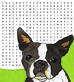 Hondensoorten puzzel