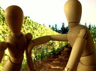 Nabots wijngaard