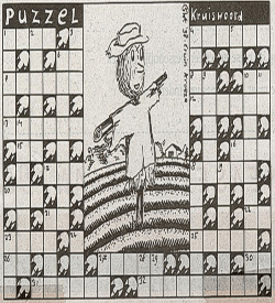 Stokstijf kruiswoord raadsel puzzel