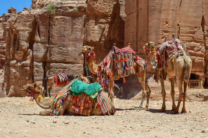 Groeten uit de Sinai